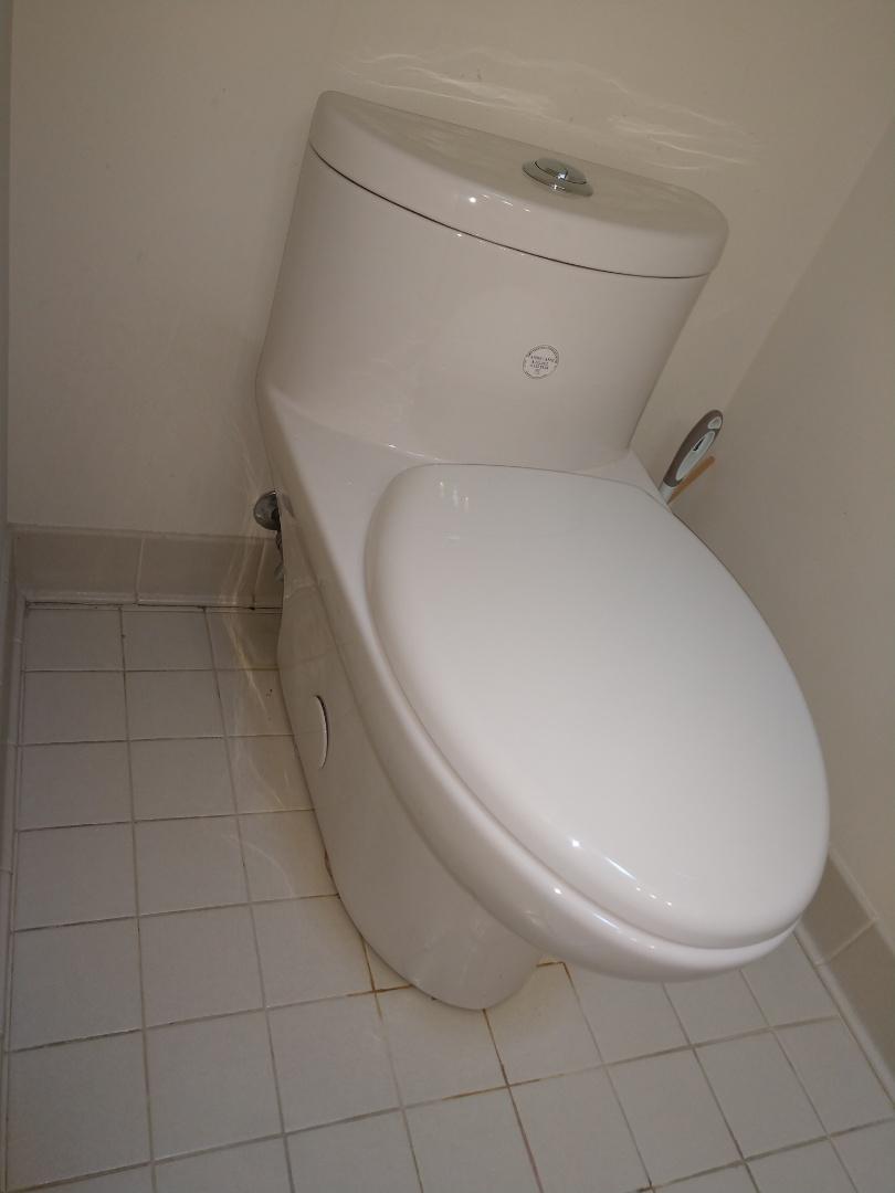 China Township, MI - American standard toilet install