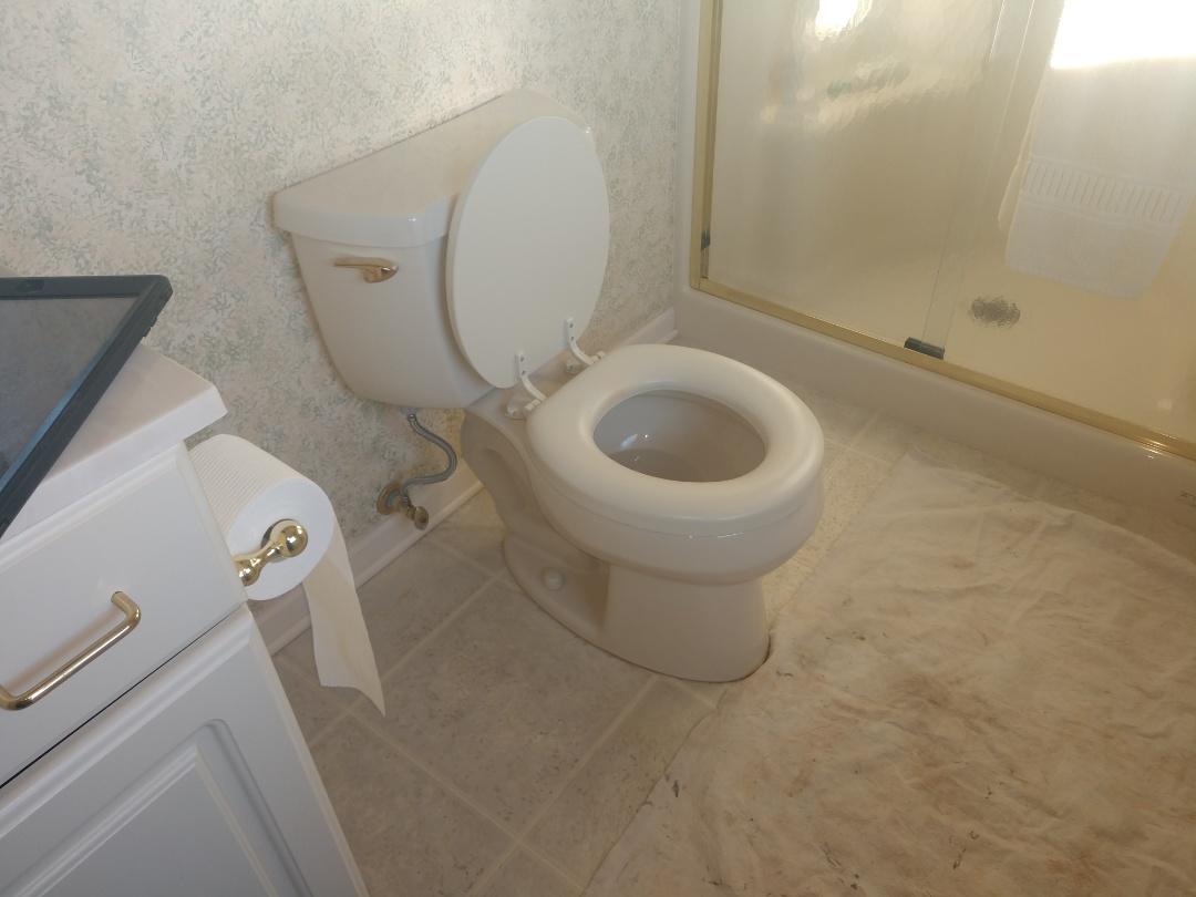 Marine City, MI - Toilet replacement