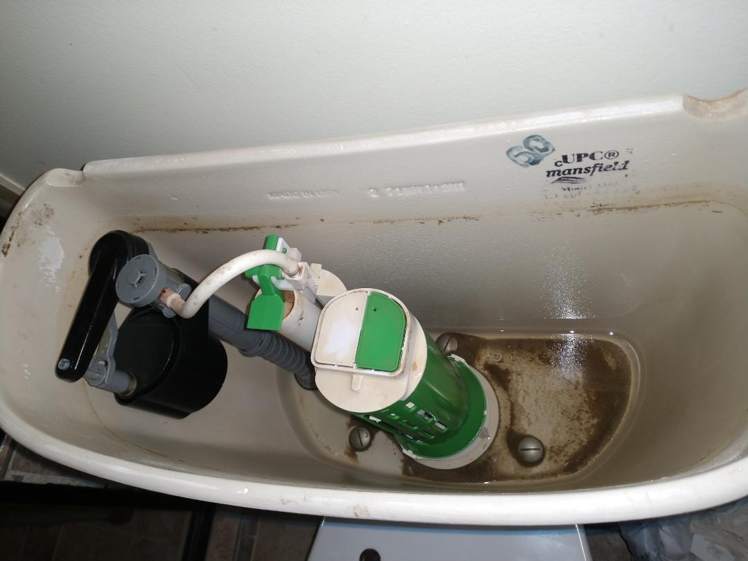 Memphis, MI - Toilet repair