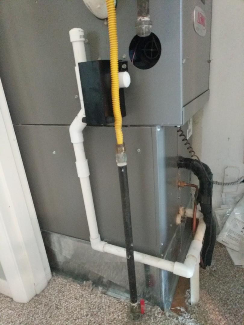 Lexington, MI - Replaced condensate trap on Lennox furnace.