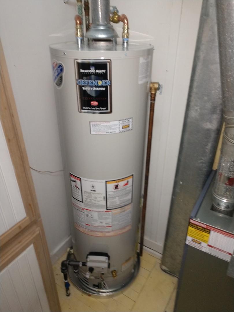 Lexington, MI - Water heater replacement