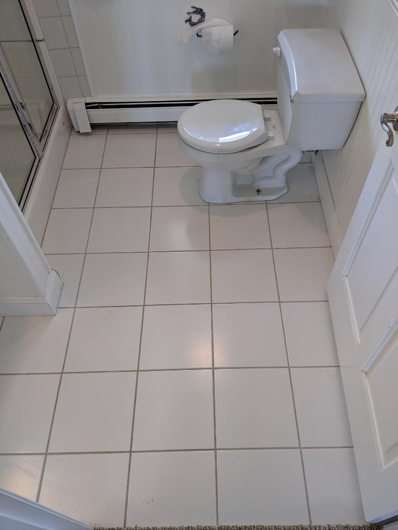 Lexington, MI - Toilet repair
