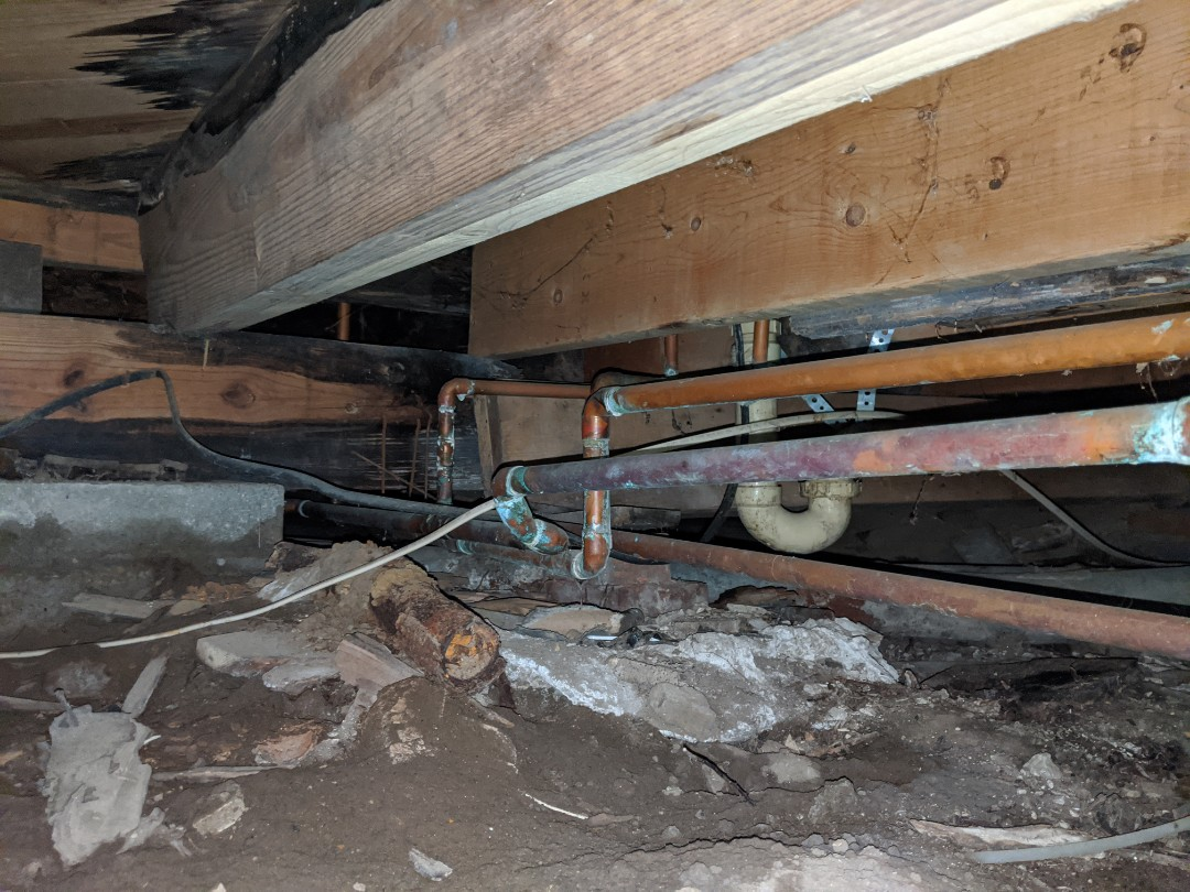 Algonac, MI - Water leak check up