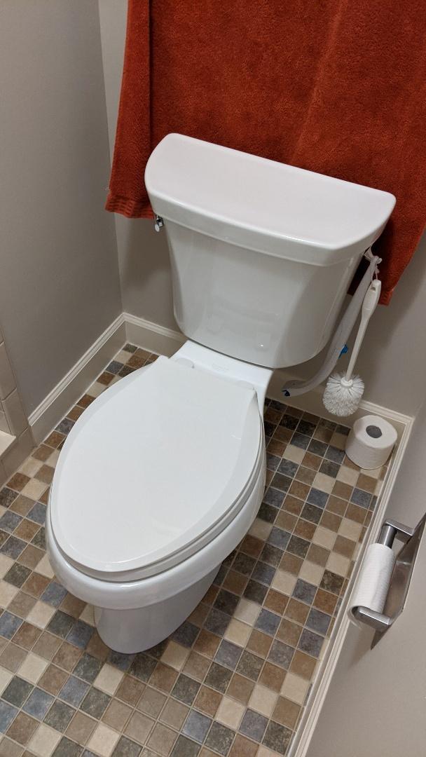 Saint Clair, MI - Power flush toilet replacement