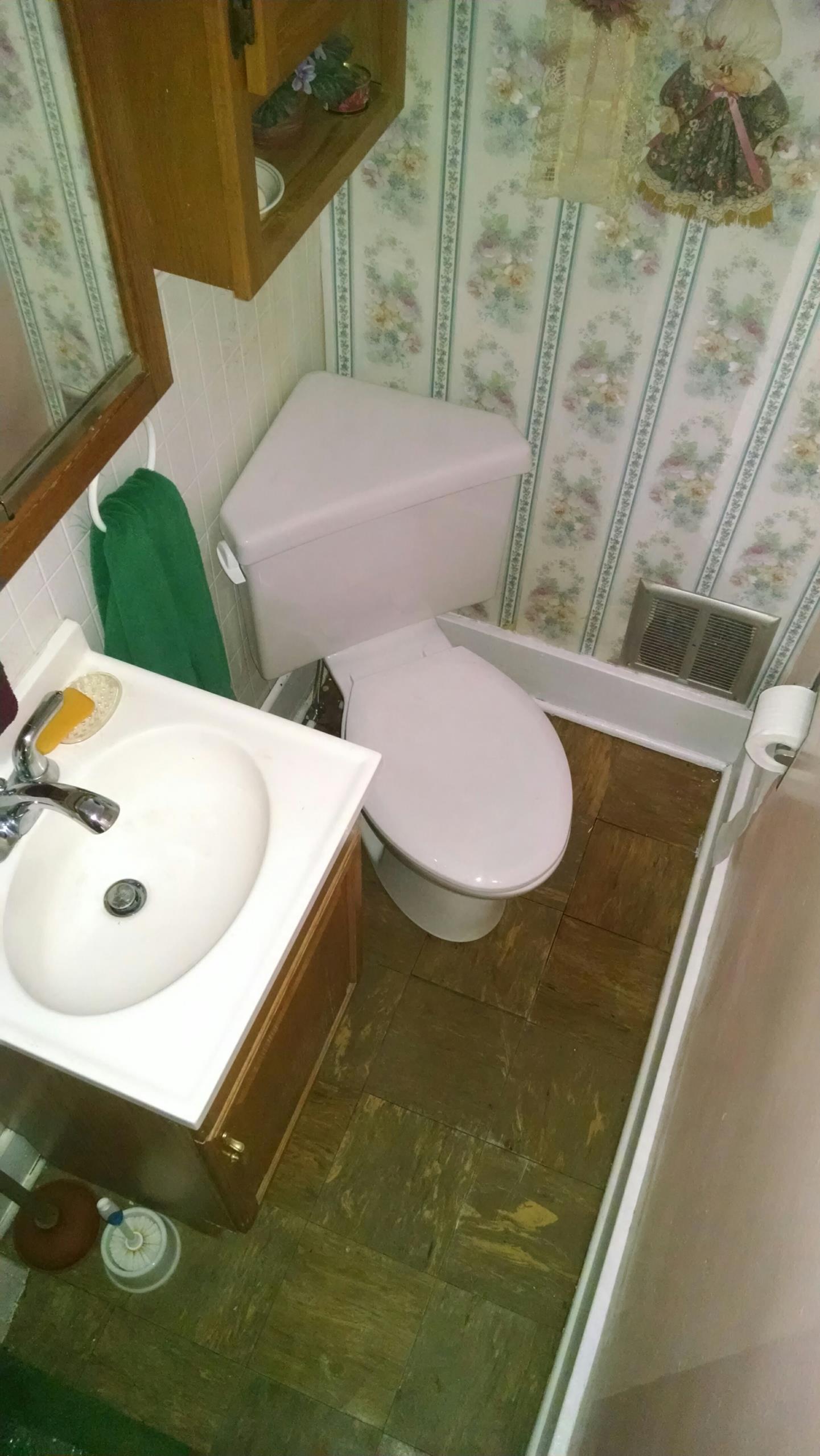 Saint Clair, MI - Leaking toilet