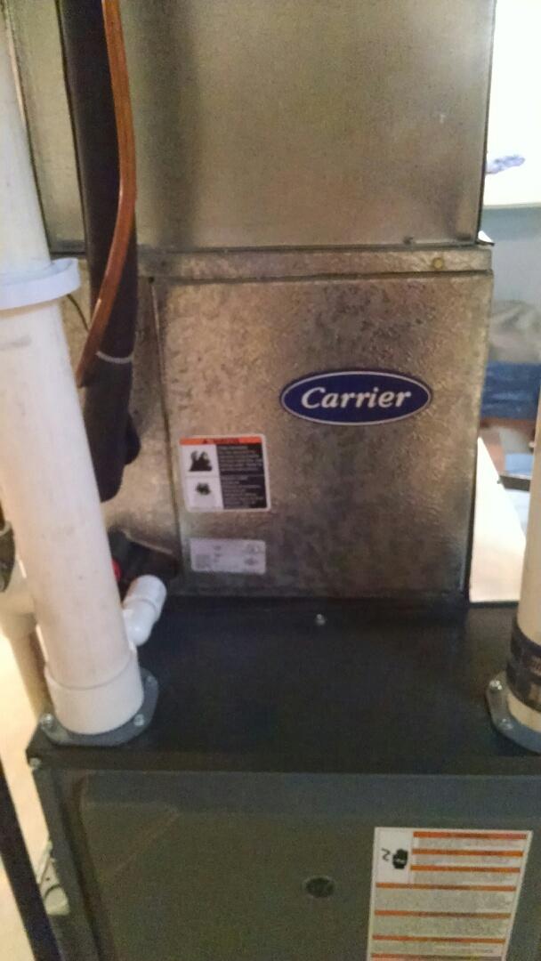 Saint Clair, MI - Clean evaporator coil on AC.