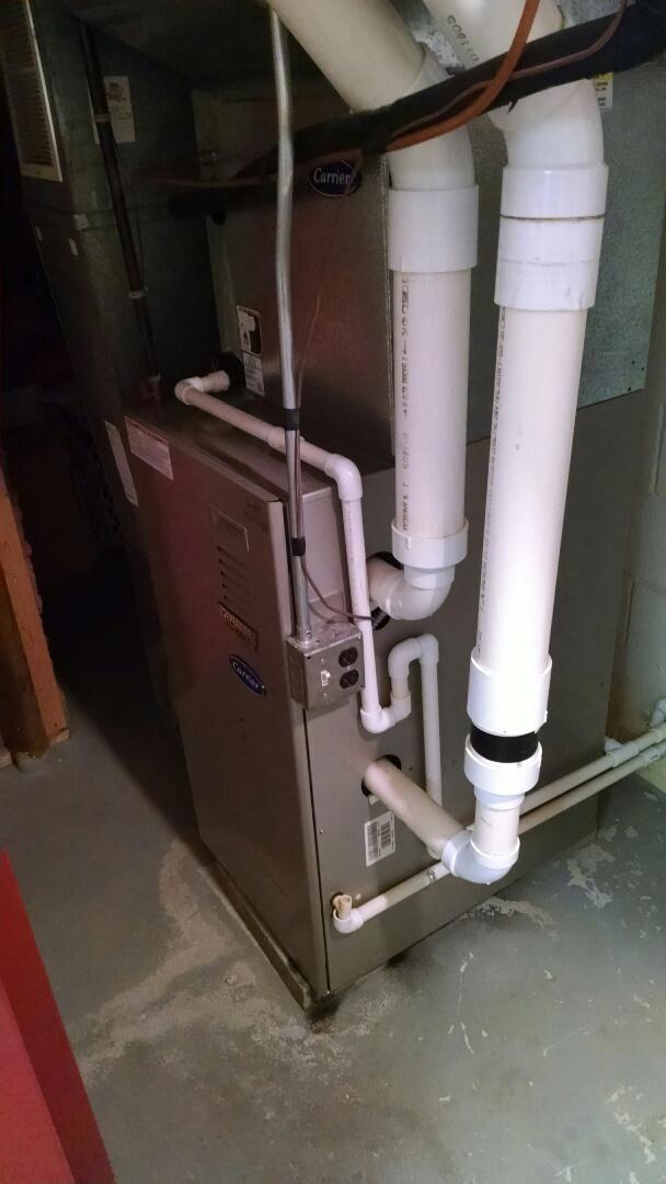 Saint Clair, MI - Tune up on Carrier furnace.