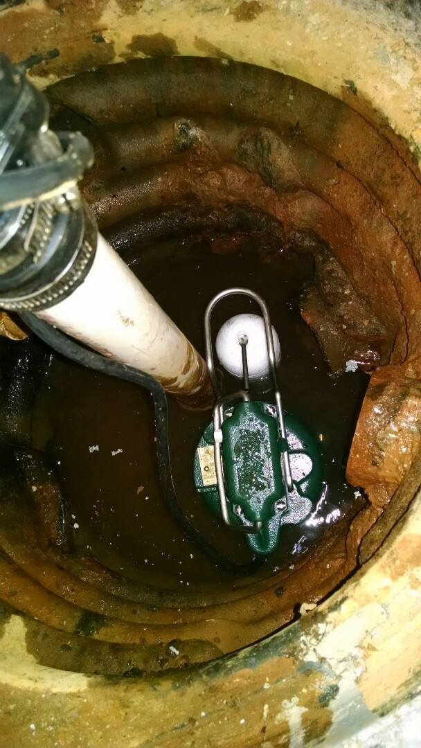 Saint Clair, MI - Sump pump repair