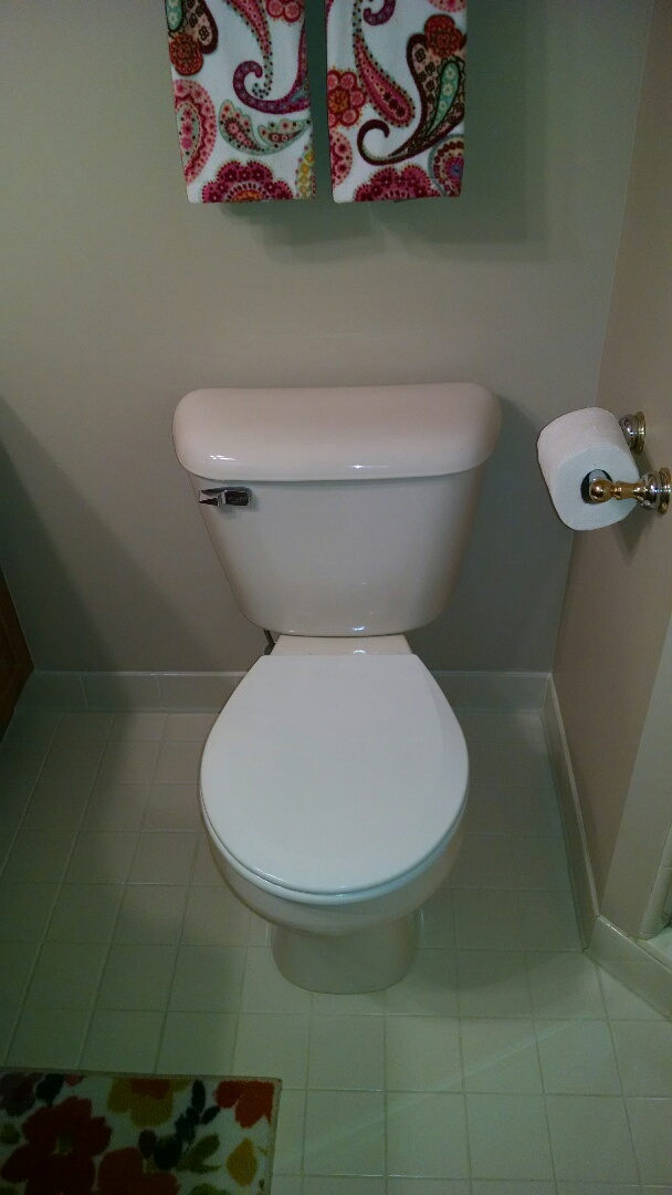 East China, MI - Mansfield toilet repair