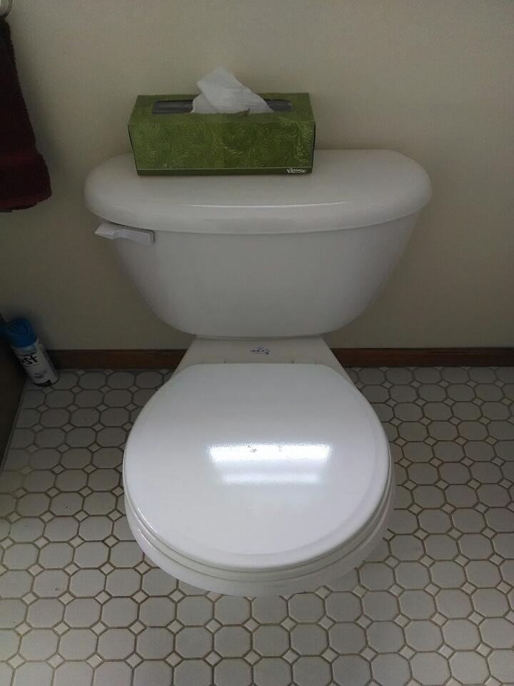 Yale, MI - Briggs toilet repair