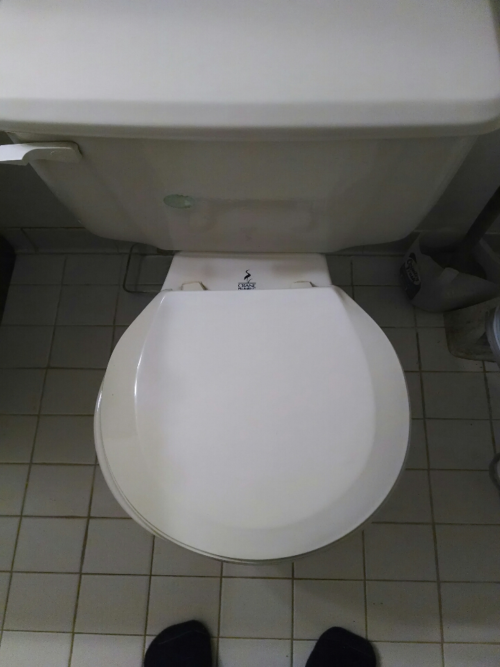 Croswell, MI - crane toilet repair