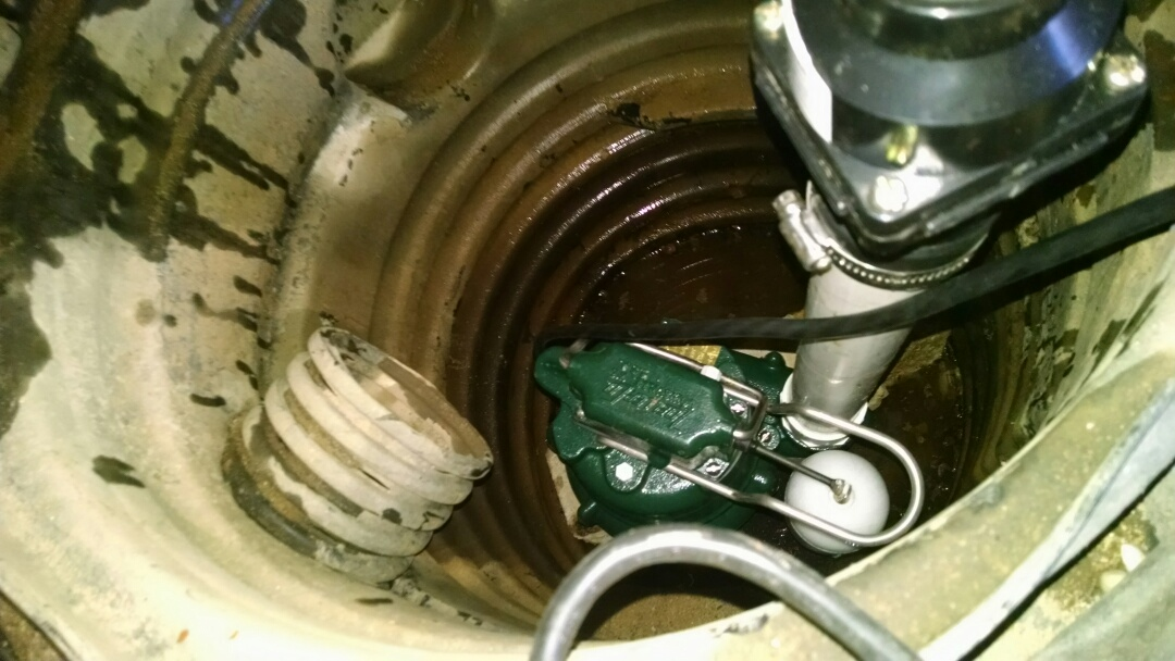 Marine City, MI - Zoeller sump pump install