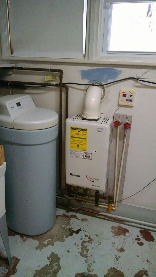 Goodells, MI - Rinnai tankless water heater maintenance.