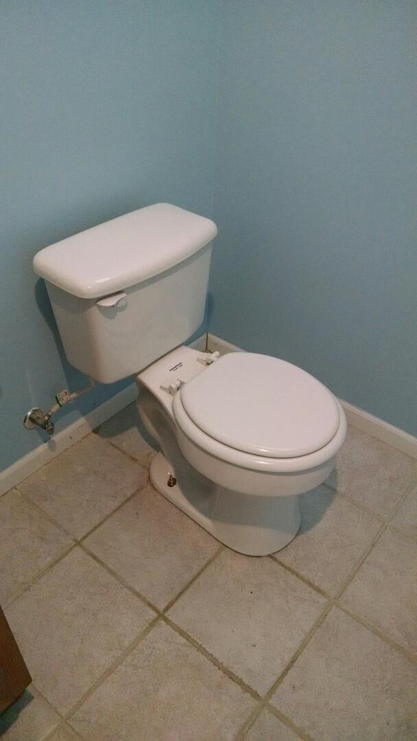 Port Huron, MI - Extra high toilet install