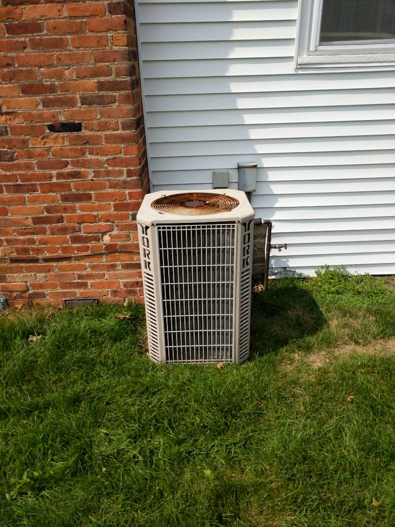 Port Huron, MI - York AC clean and check.