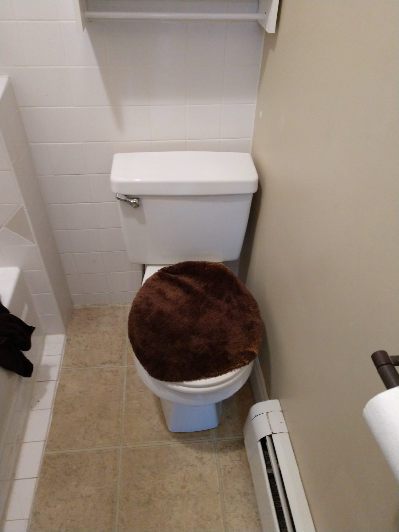 Port Huron, MI - Plumber needed. Toto toilet repair.