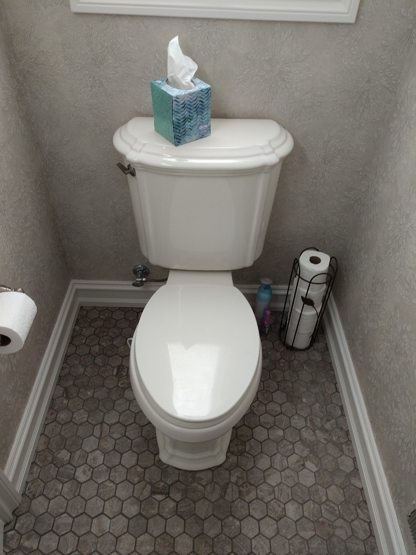 Fort Gratiot Township, MI - Plumber needed. Kohler toilet repair or installation.