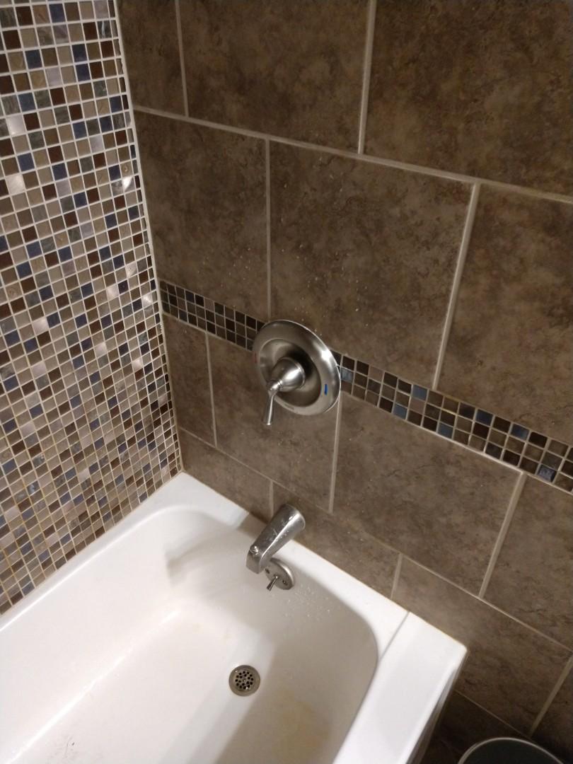 Saint Clair, MI - Plumber needed. Repair or replace Moen shower valve.