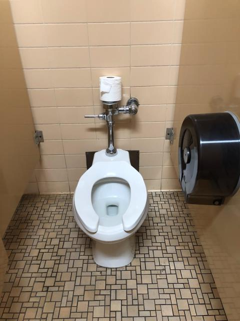Chicago, IL - Toilet repair, Chicago
