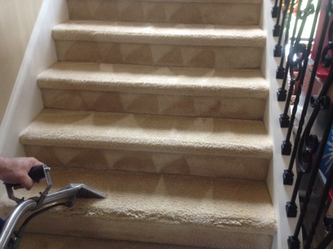 Parkland, FL - just finished three room of carpet and stairs