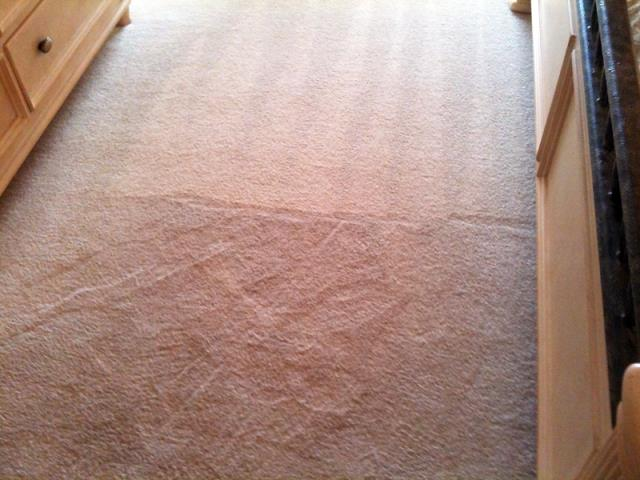 Pembroke Pines, FL - This carpet cleaned up GREAT!