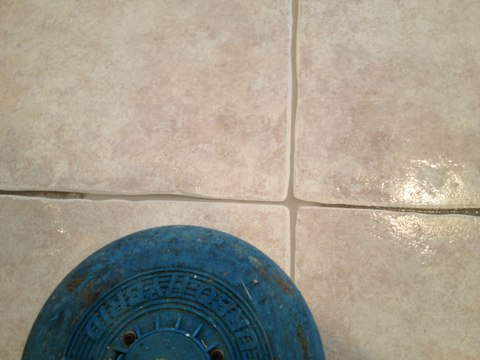Just cleaned some tile and Royal Palm Beach really came out to almost looks like brand-new again