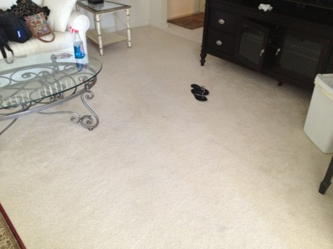 We restretch two rooms of carpet and they look like new again!!