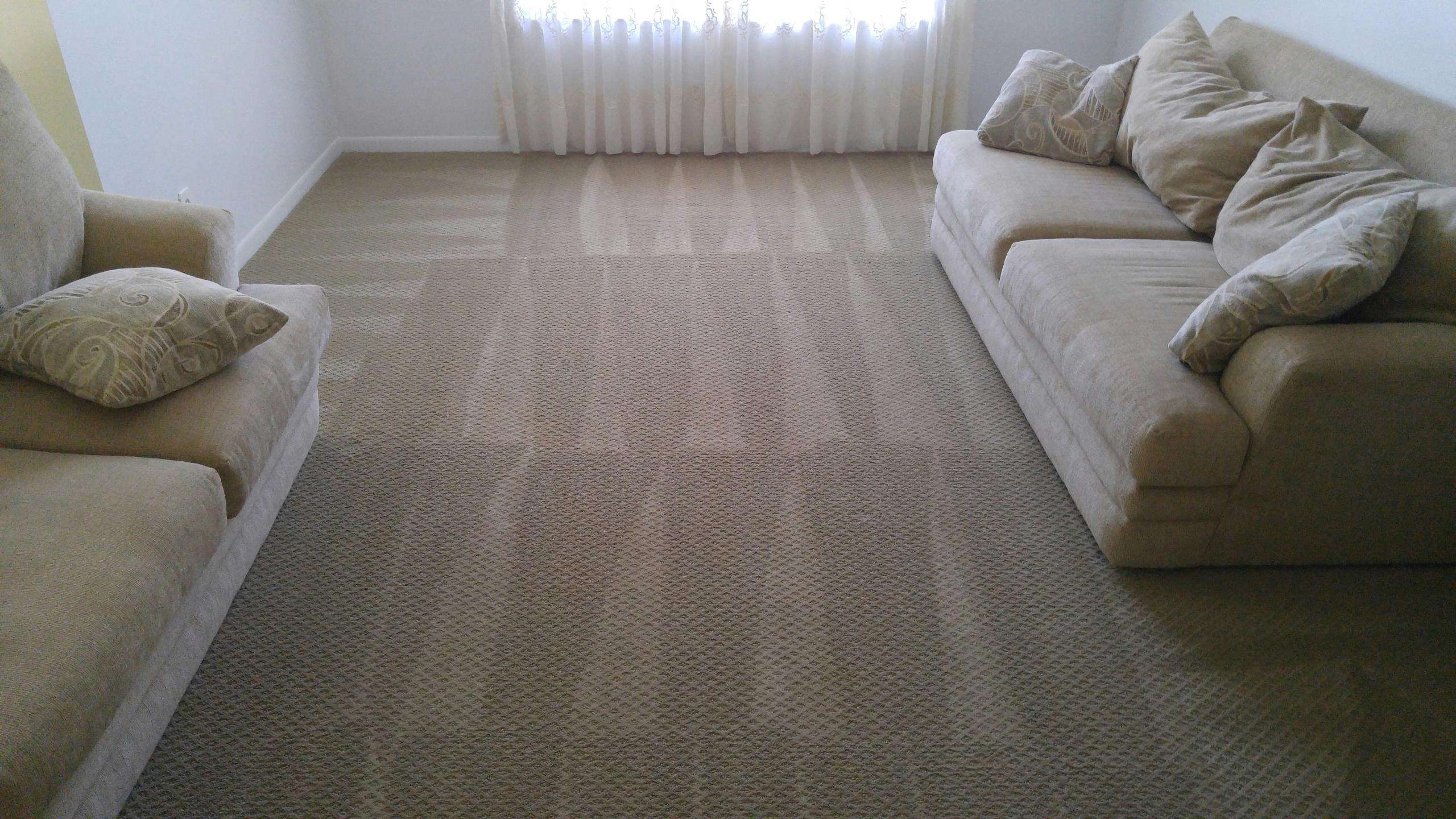 Coral Springs, FL - 1 room carpet cleaning Coral Springs