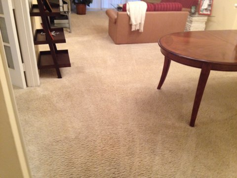 Plantation, FL - Cleaned 5 room of carpet, and they came out like new again