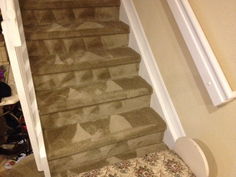Cleaned 1rooms and stairs of carpet they came out like new