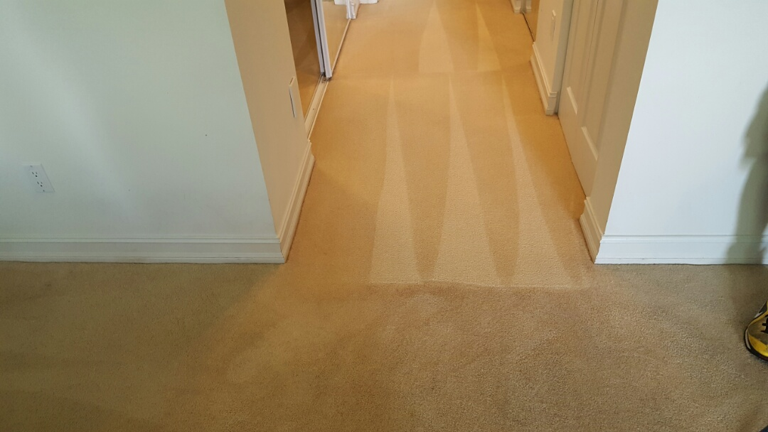 Tamarac, FL - Carpet cleaning tamarac