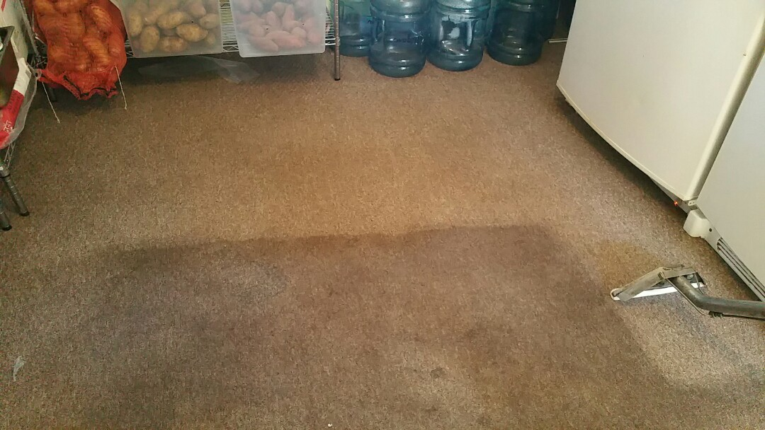 Carpet cleaning out in Pompano Beach Florida