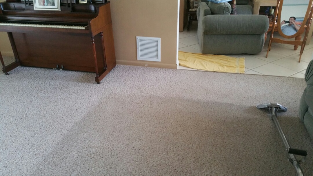Pembroke Pines, FL - Carpet cleaning in Hollywood