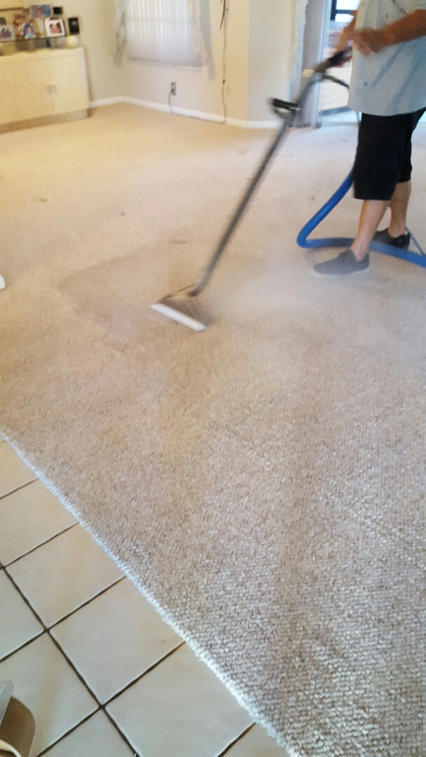 Coral Springs, FL - Cleaning carpet That Hasn't been done in 3 years