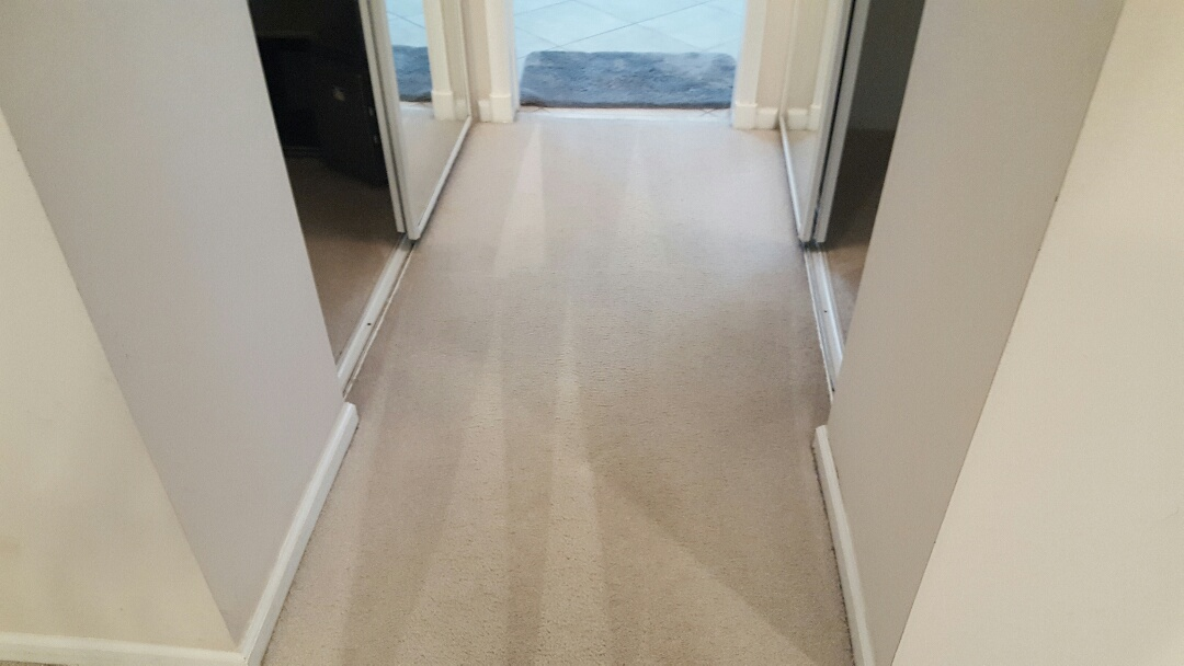 2 room carpet cleaning job in Boynton Beach