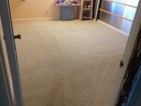 Deerfield Beach, FL - cleaned one room of carpet came out like new