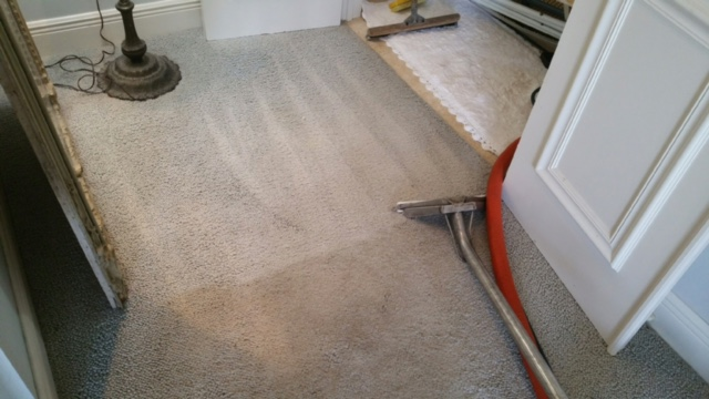 Carpet repair and cleaning in West Palm Beach