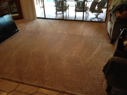 Coral Springs, FL - cleaned six rooms of carpet out Coral Springs these carpets look good now