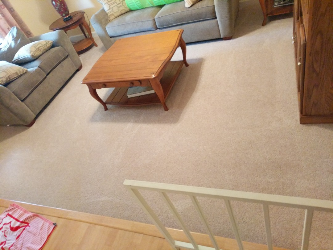 Sunrise, FL - Clean five rooms of carpet in Sunrise