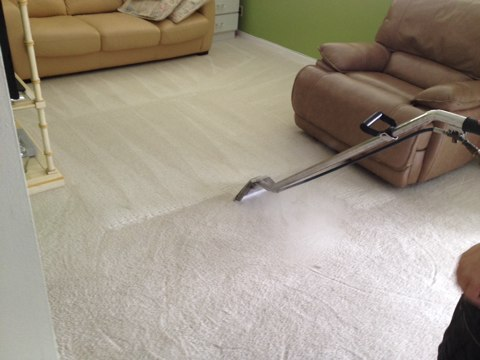 Pembroke Pines, FL - cleaned 2 rooms of white carpet, came out like new