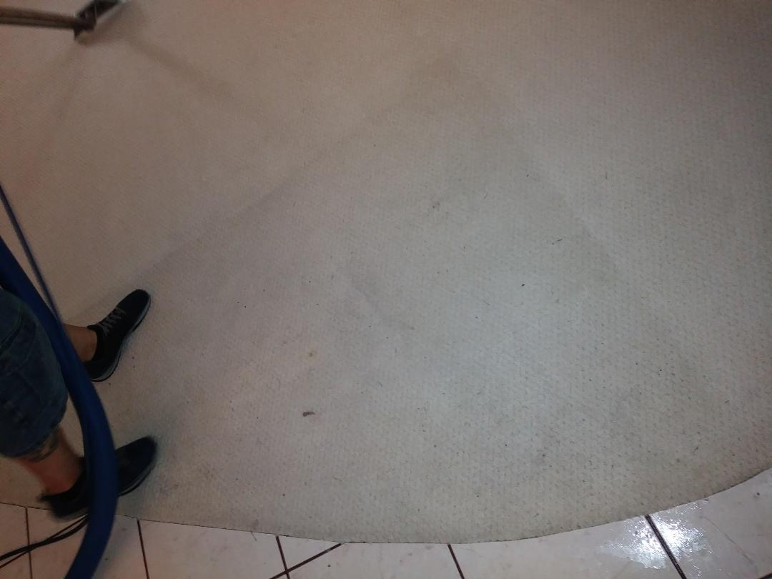 Delray Beach, FL - Cleaned 1 room of carpet..