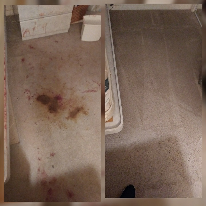 Tamarac, FL - Cleaned 1 room of carpet with a lot of blood everywhere..
