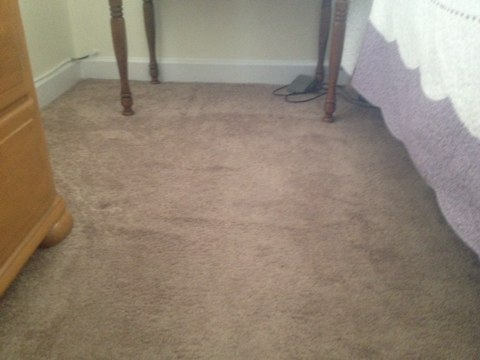 Restretch two rooms of carpet pulled out all the ripples carpet looks nice and flat again