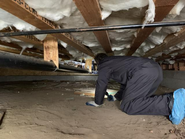 Crawlspace inspection done at a home in Solana Beach with guest house. Plumbing leaks were found at a waste pipe and at a water supply pipe in the crawlspace. Older cast iron waste piping was also observed. We always highly recommend adding a sewer video scope inspection when we observe older cast iron waste piping.