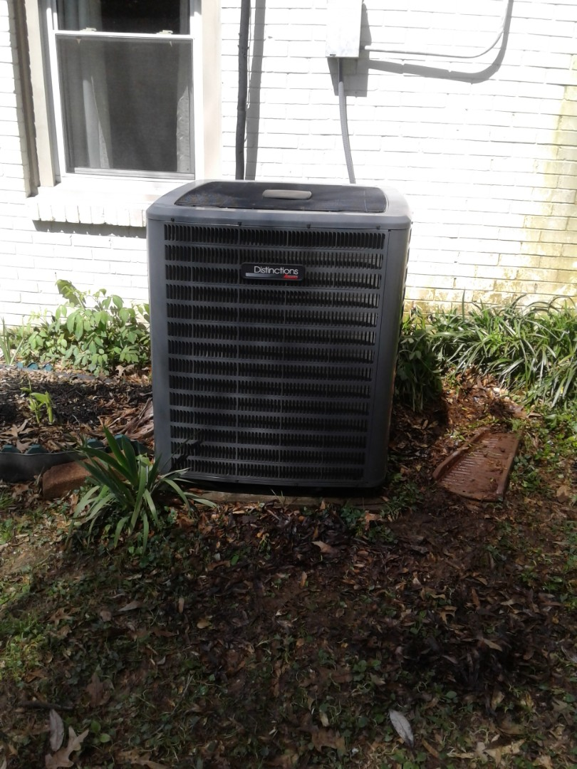 Memphis, TN - Maitiance and inspection on an Amana condenser.