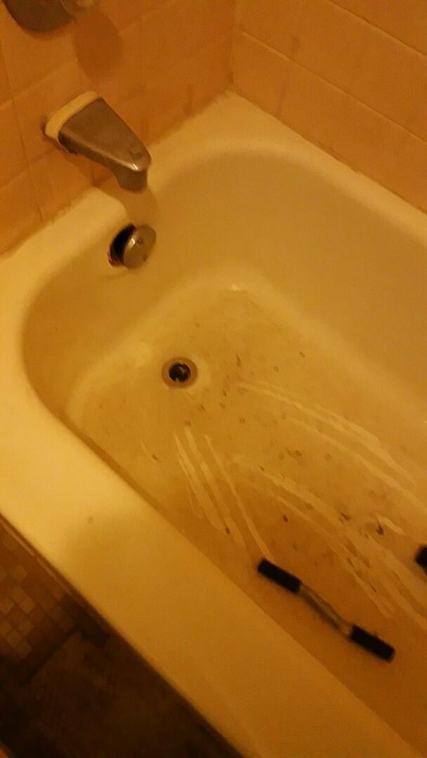Palatine, IL - Bathtub rodding