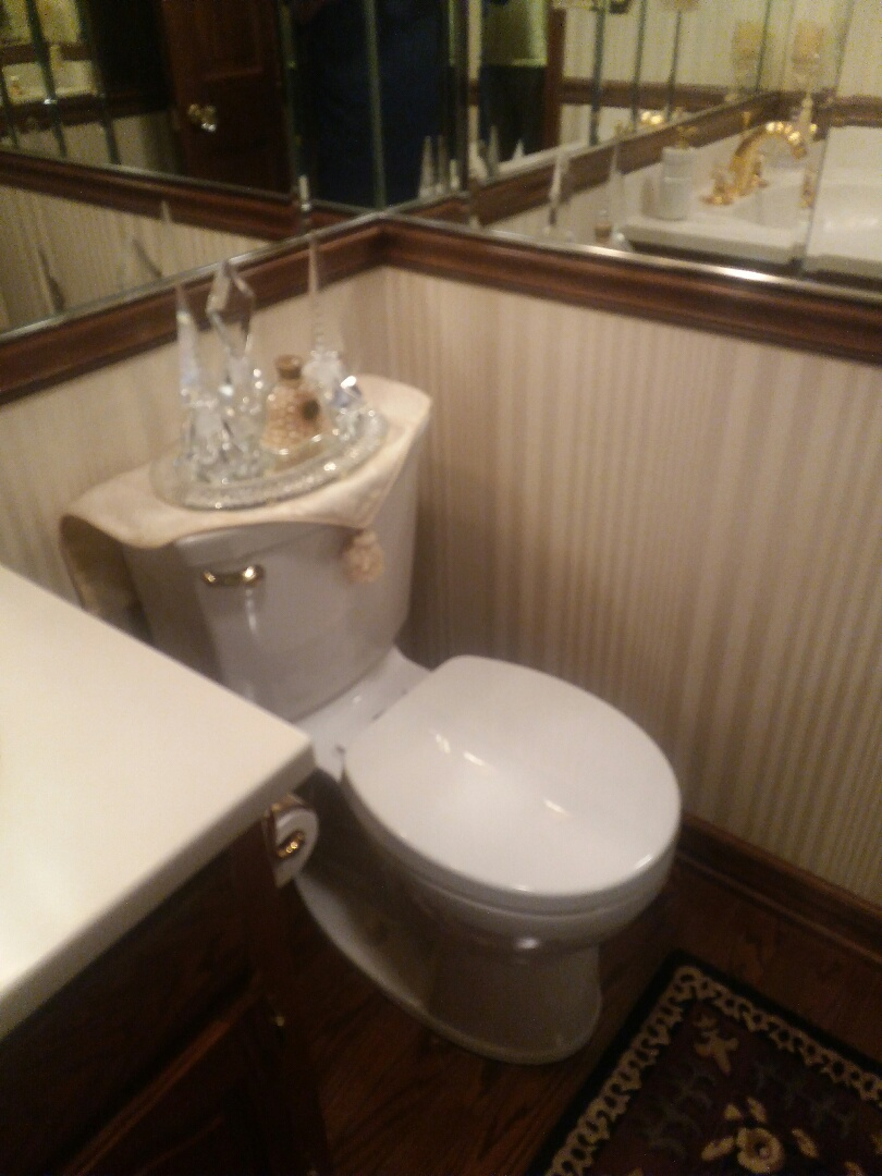Arlington Heights, IL - Install new toilet