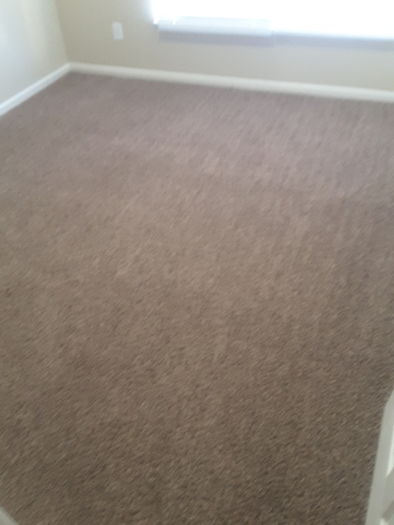 Goose Creek, SC - Carpets turned out amazing !!