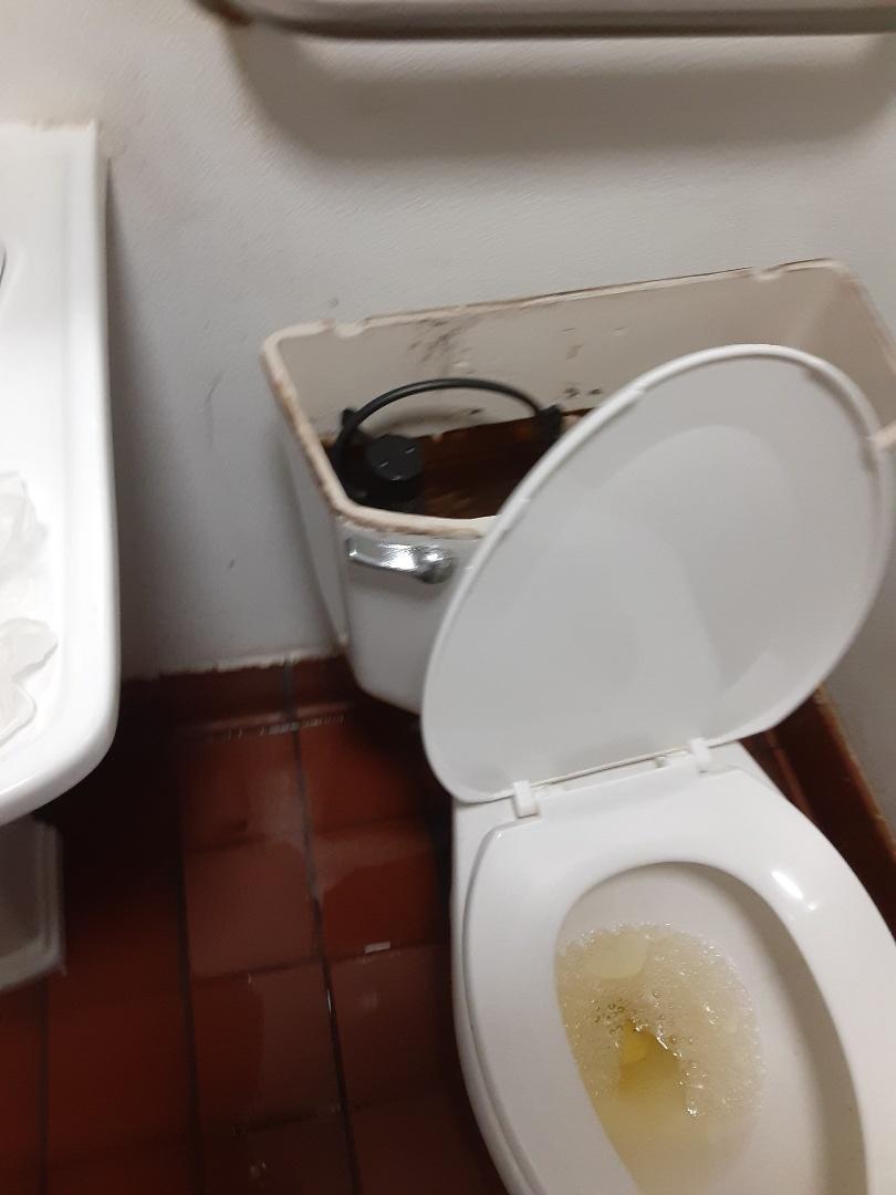 Mobile, AL - Toilet Leaks