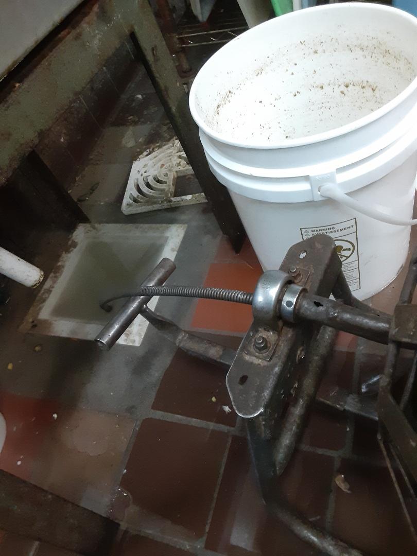 Fairhope, AL - Floor drain stoppage